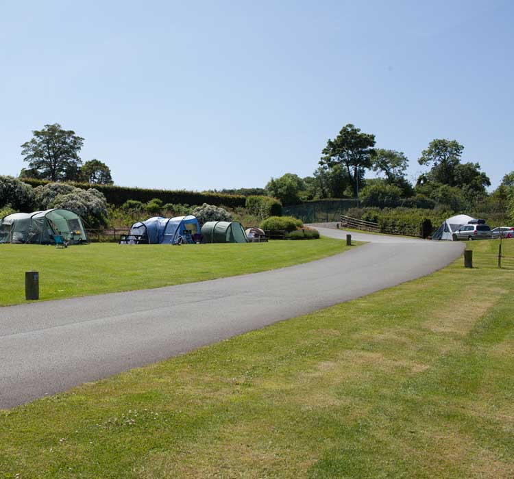 Home Farm Anglesey camping